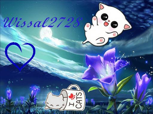 Wissal2728